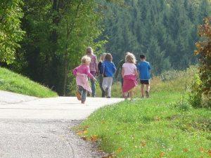Mehrere Kinder gehen gemeinsam im Wald spazieren